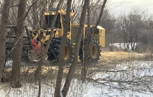 Tree and brush removal for pedestrian path
